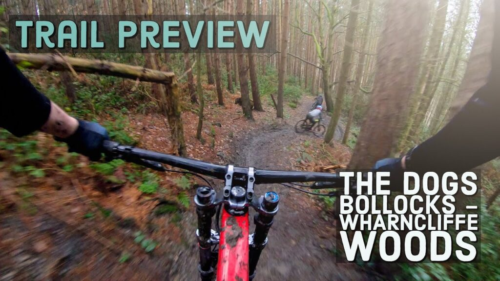 Trail Preview | The Dogs Bollocks – Wharncliffe Woods